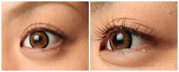 eyelash40.jpg